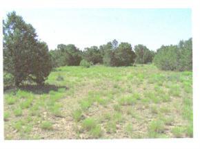 275 Federal Forest NE, Mountainair, NM 87036