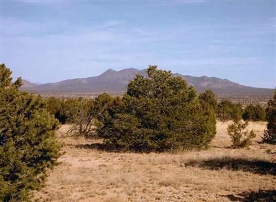 1 Luna Azul, Sandia Park, NM 87047