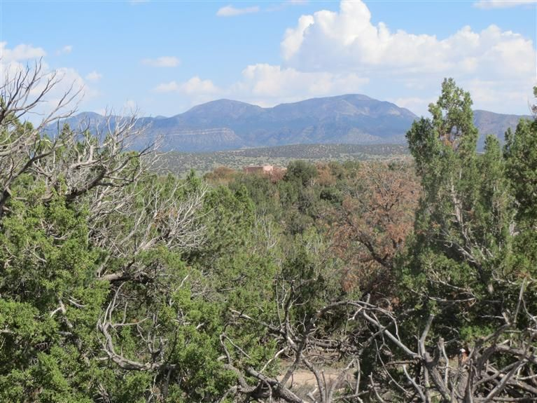 Pinon Park Trail, Sandia Park, NM 87047