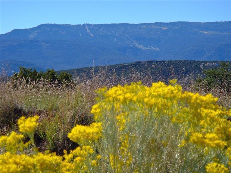 53 Turquoise Drive, Sandia Park, NM 87047