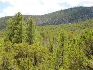 37 Calle Del Cedro, Sandia Park, NM 87047