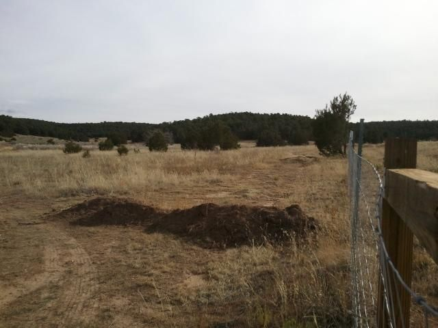 Kings RD - Premitive RD, Tijeras, NM 87059