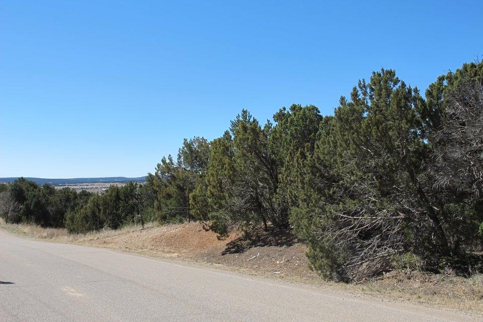 Homestead, Edgewood, NM 87015