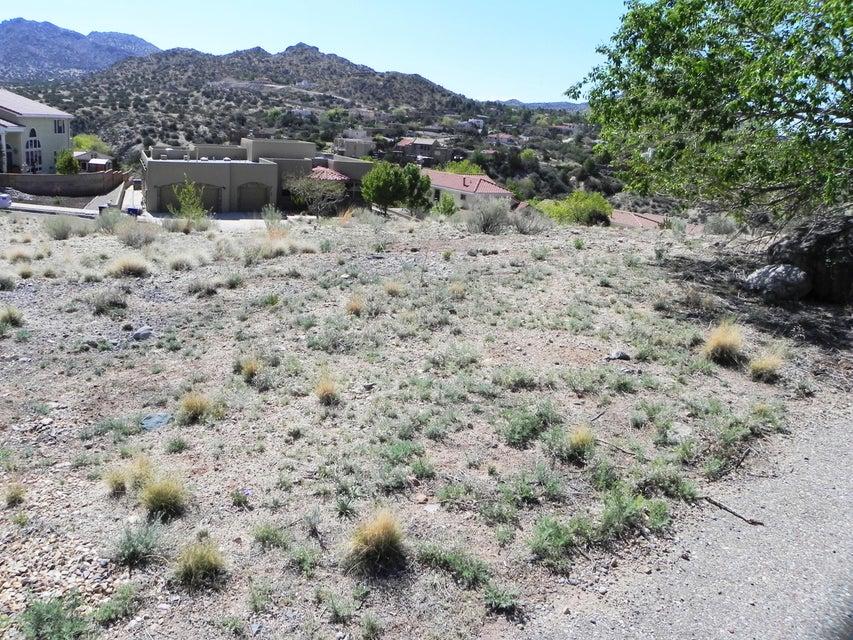 13708 Poinsettia Court, Albuquerque, NM 87123