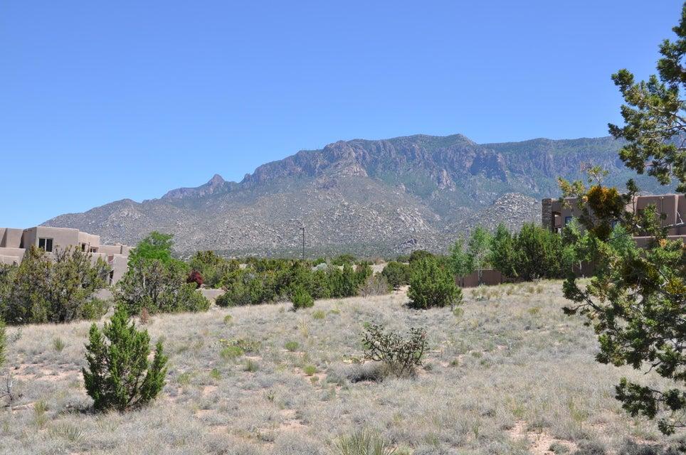 13701 RICEGRASS Place NE, Albuquerque, NM 87111