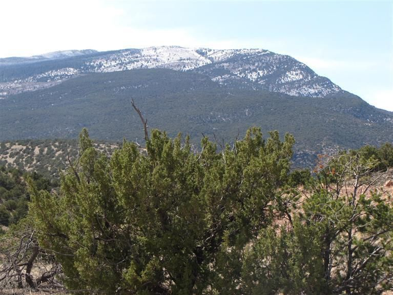 Lot 2-A CAMINO DEL CUERVO, Placitas, NM 87043