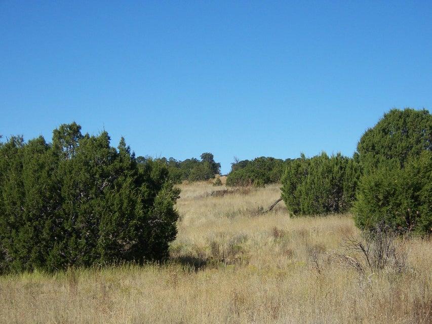 McComb Road, Edgewood, NM 87015