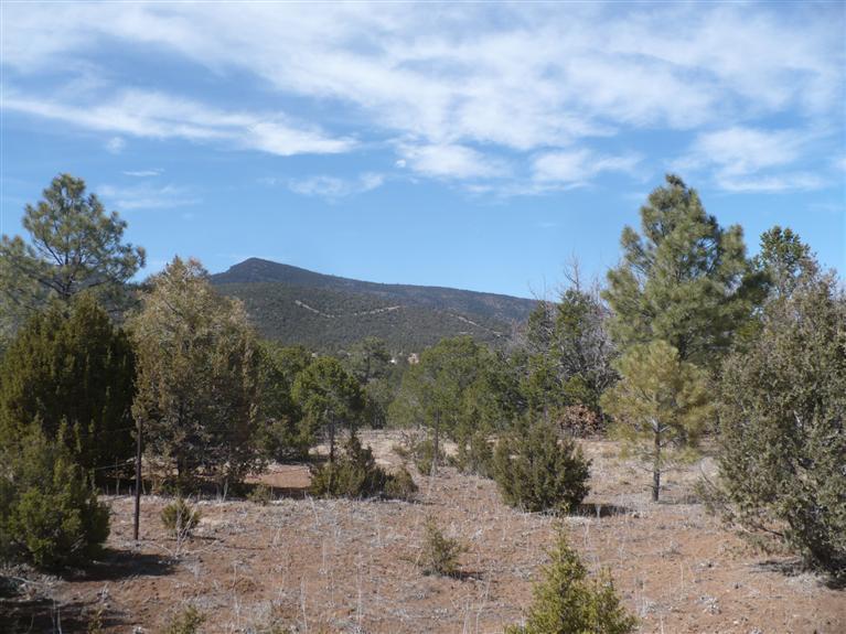 La Madera lot1,sec1,t11n,r5e, Sandia Park, NM 87047