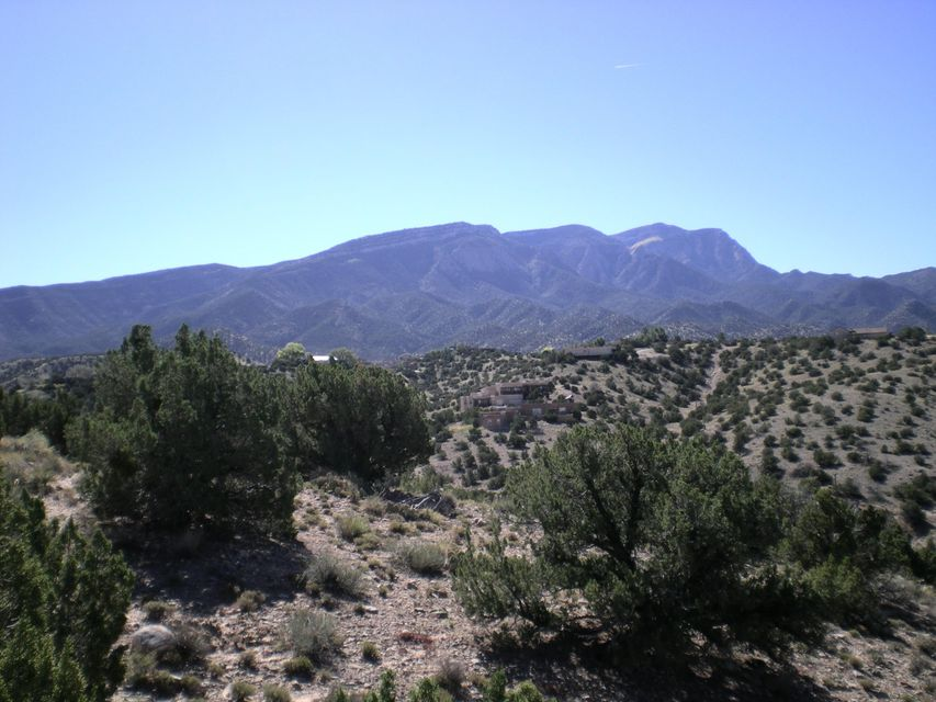 Yucca Lane, Placitas, NM 87043