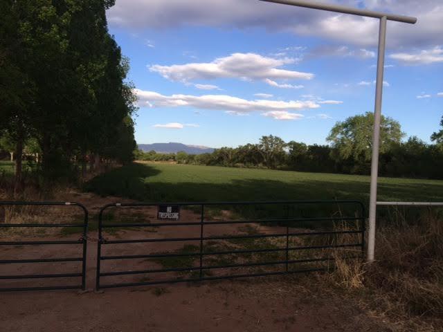 Carrasco Lane Land of Vigil 5, Los Lunas, NM 87031