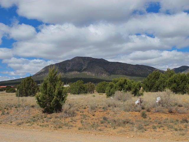 1310 Mountain Valley Road, Edgewood, NM 87015