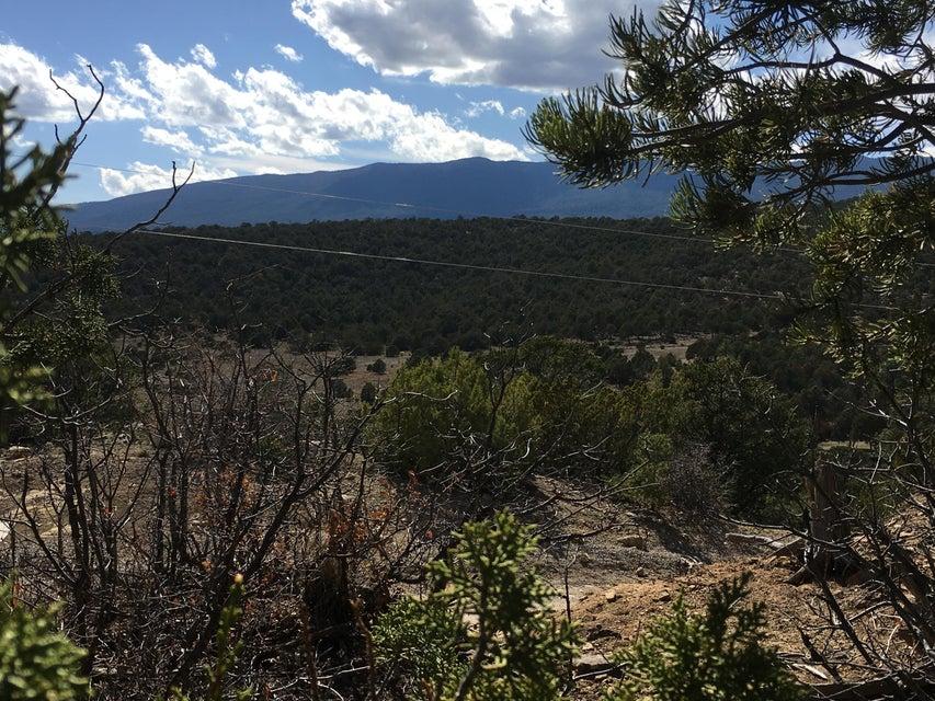 Lost Valley Loop, Cedar Crest, NM 87008