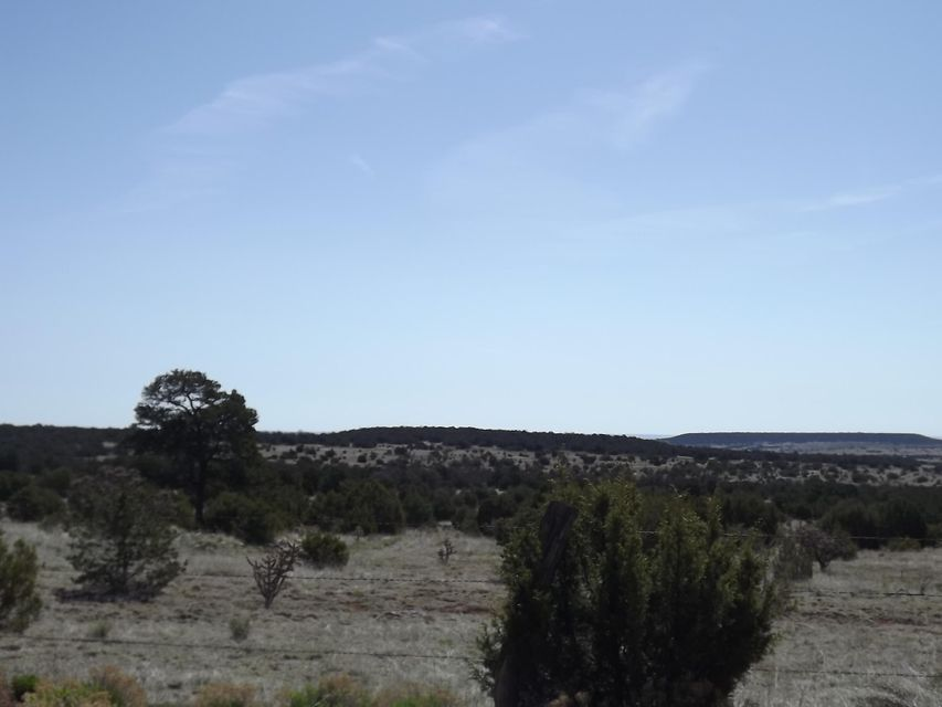 Gallegos Road, Tijeras, NM 87059