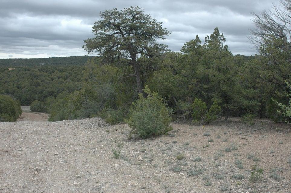 209 Five Hills (L18,B5,FH) Drive, Tijeras, NM 87059