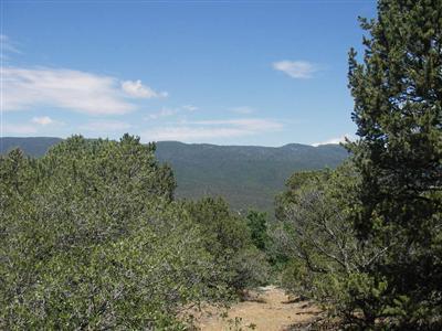 #4 El Gallo, Cedar Crest, NM 87008