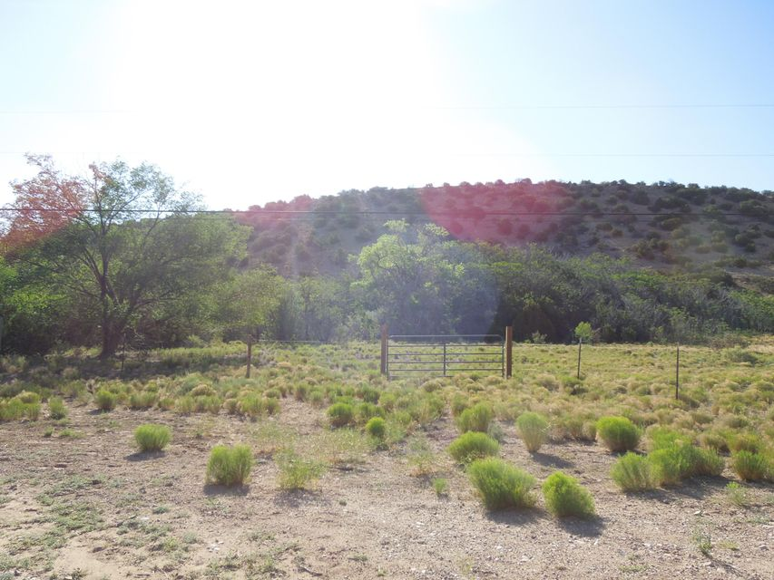 83 Camino De San Francisco, Placitas, NM 87043