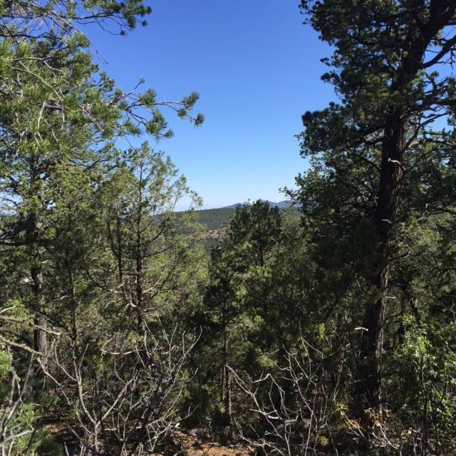 20 Vista Alta Drive, Tijeras, NM 87059