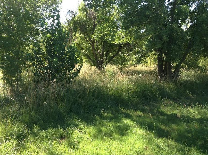 Lot 15A2 Apple Blossom Lan, Corrales, NM 87048
