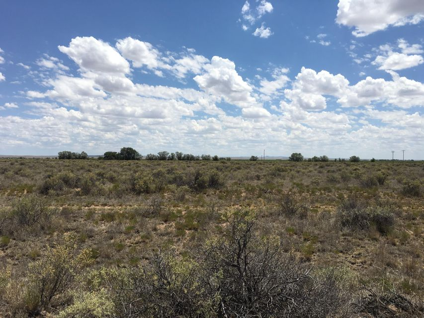 210 Valle Verde Rd, Moriarty, NM 87035