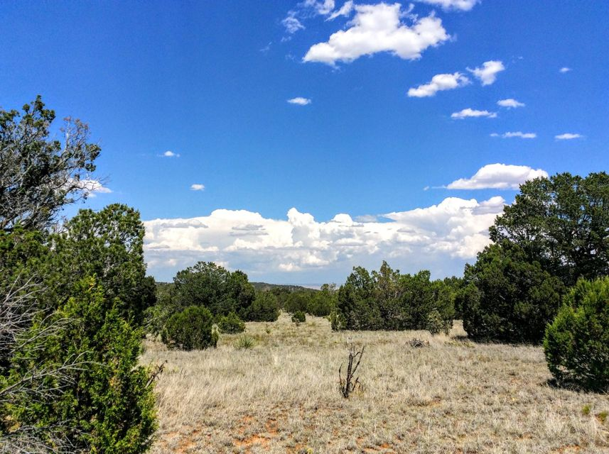 Lands of Hanson, Edgewood, NM 87015