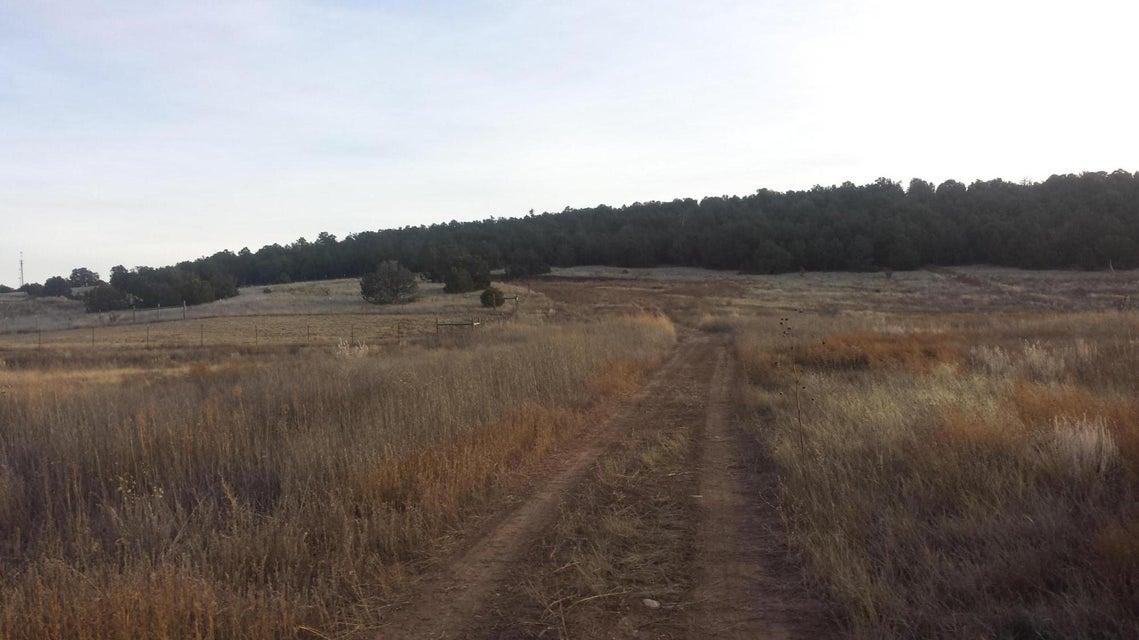 108 DINKLE Road, Edgewood, NM 87015