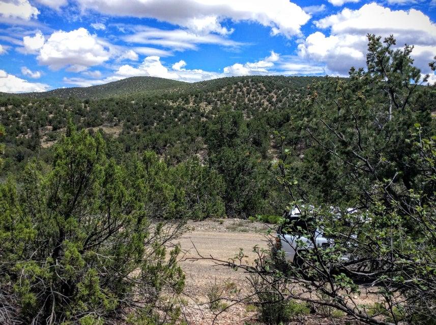 Gaddis, Sandia Park, NM 87047