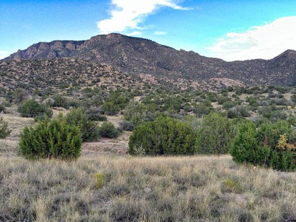 Atanacio Road SE, Albuquerque, NM 87123
