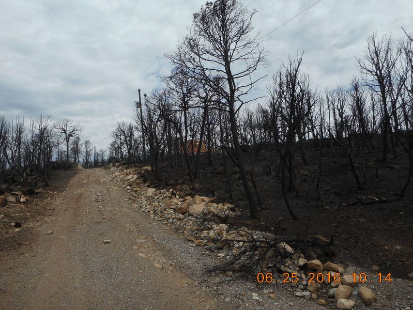 322 ACEVES Road, Estancia, NM 87016