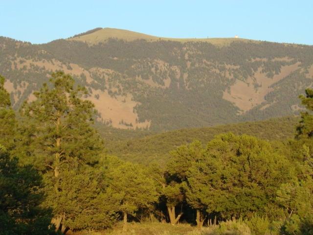 Mill Canyon, Magdalena, NM 87825