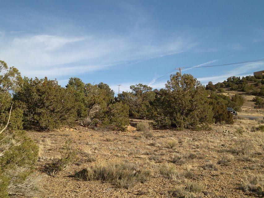 100 Camino de las Huertas, Placitas, NM 87043
