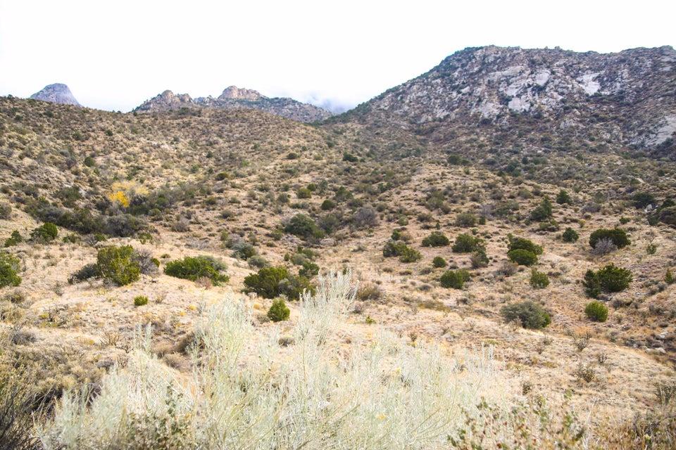 Tierra Monte Drive NE, Albuquerque, NM 87122