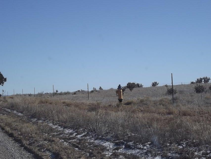 140 NUGENT Road, Edgewood, NM 87015