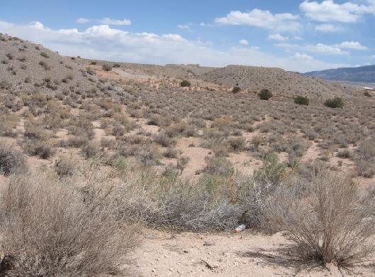 5591 Iris     ( U17  Bl 81   L21) Road NE, Rio Rancho, NM 87144