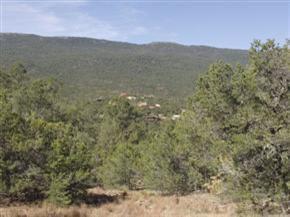 121 Vista Del Cielo, Cedar Crest, NM 87008