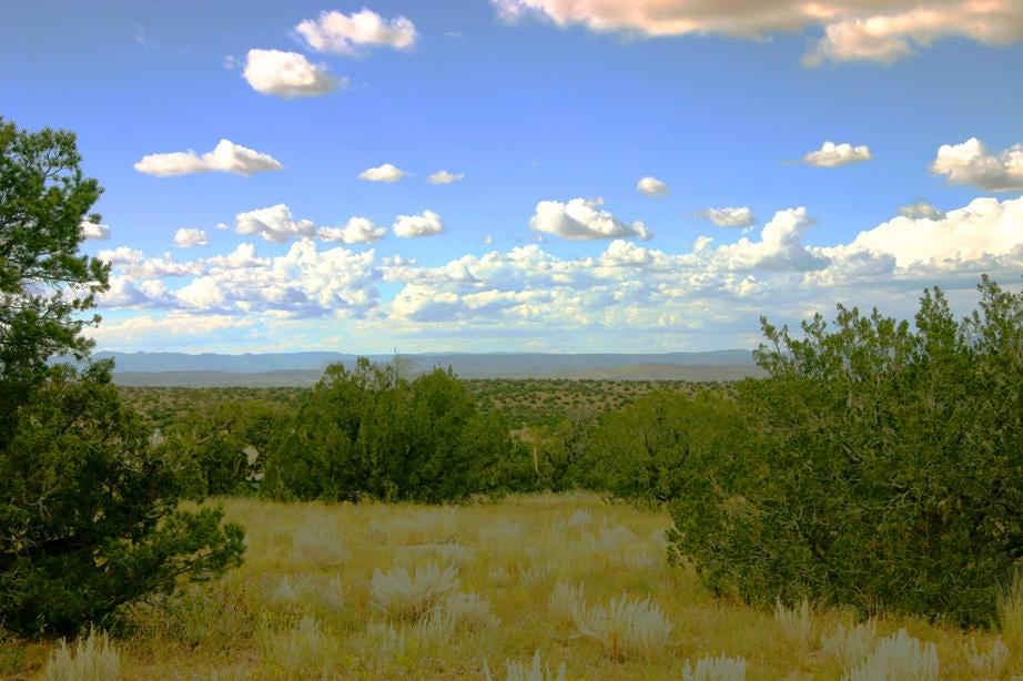142 Diamond Tail Road, Placitas, NM 87043