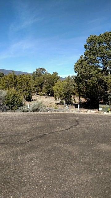 14 Concha Court Drive, Sandia Park, NM 87047
