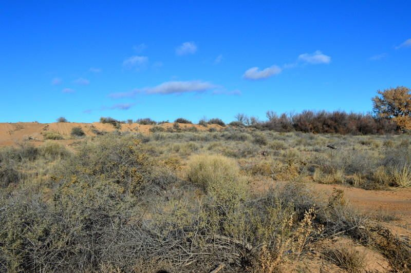 Ladera Road Tract: 17, Belen, NM 87002