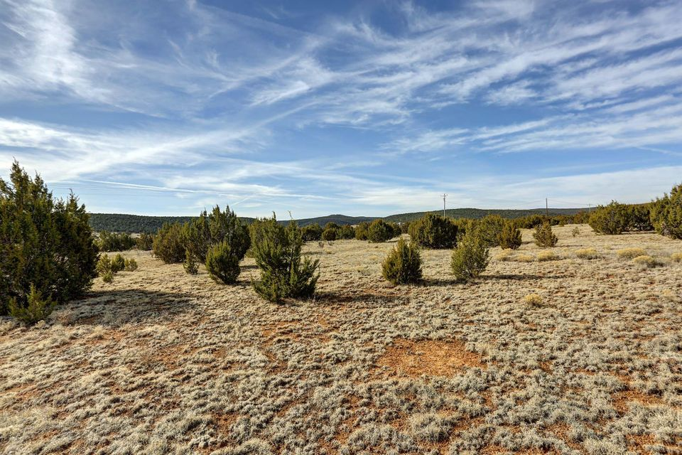 V-Hill,Edgewood,New Mexico,United States 87015,Land,V-Hill,884133