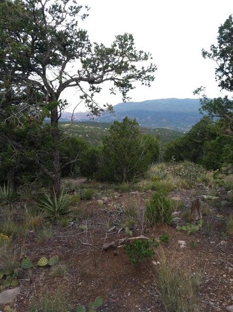 29 Mustang Mesa Trail, Tijeras, NM 87059