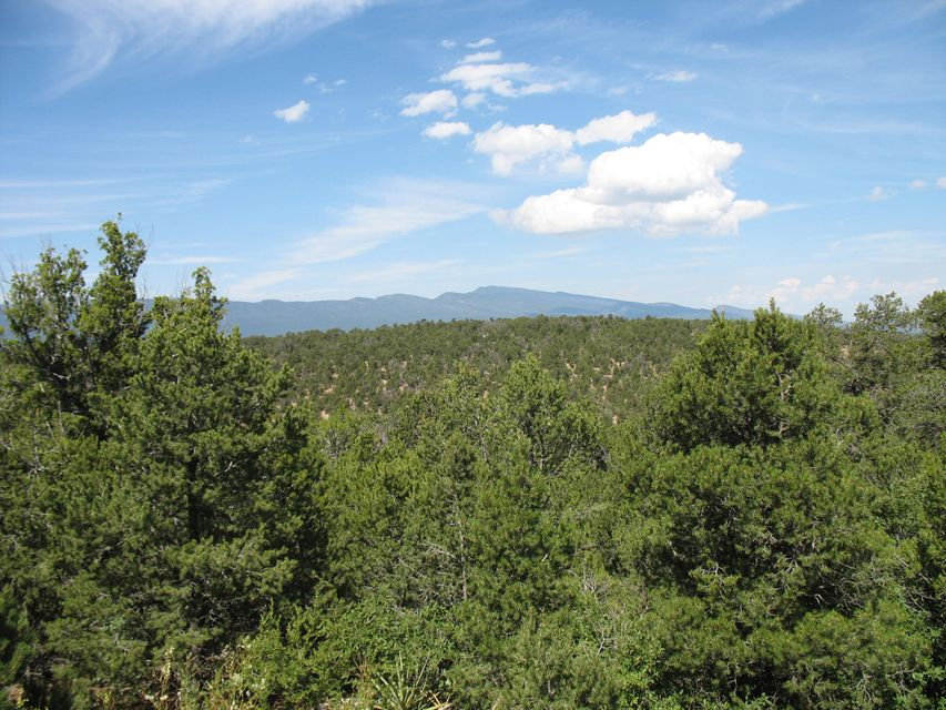 219 Via Sedillo Road, Tijeras, NM 87059
