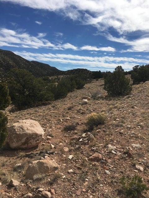 44 Algodon Lane, Placitas, NM 87043