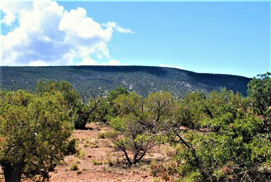 100 Wild Primrose LOT 59, Placitas, NM 87043