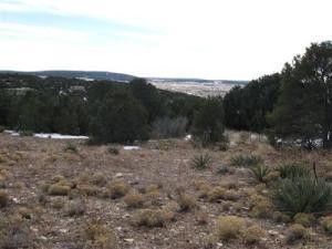 7 Stardust Lane # C, Edgewood, NM 87015