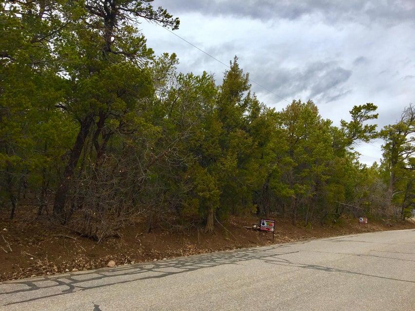 90 Raven,Tijeras,New Mexico,United States 87059,Land,Raven,885144