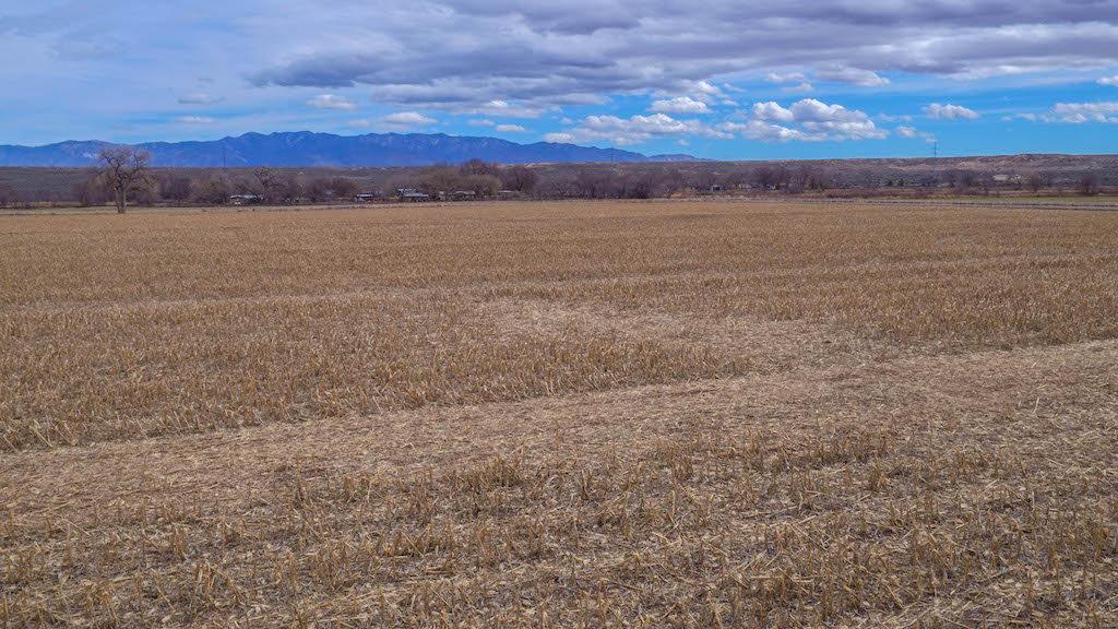 31 Vallejos Road, Los Lunas, NM 87031
