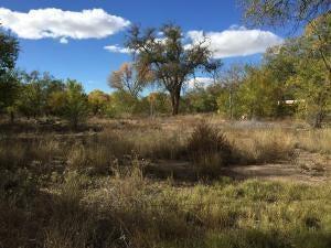 RIVERSIDE-Parcel C Drive SW, Albuquerque, NM 87105