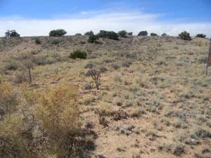 NW U5,B82,L12 Drive NW, Rio Rancho, NM 87124