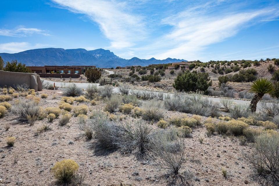 Petroglyph Trails Road, Placitas, NM 87043