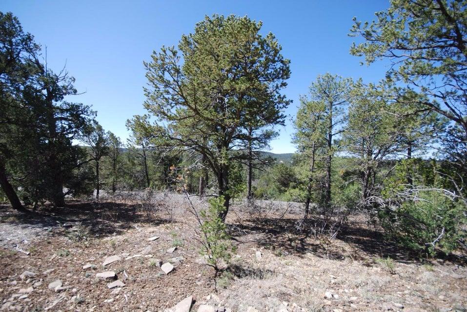 45 Edelweiss, Tijeras, NM 87059