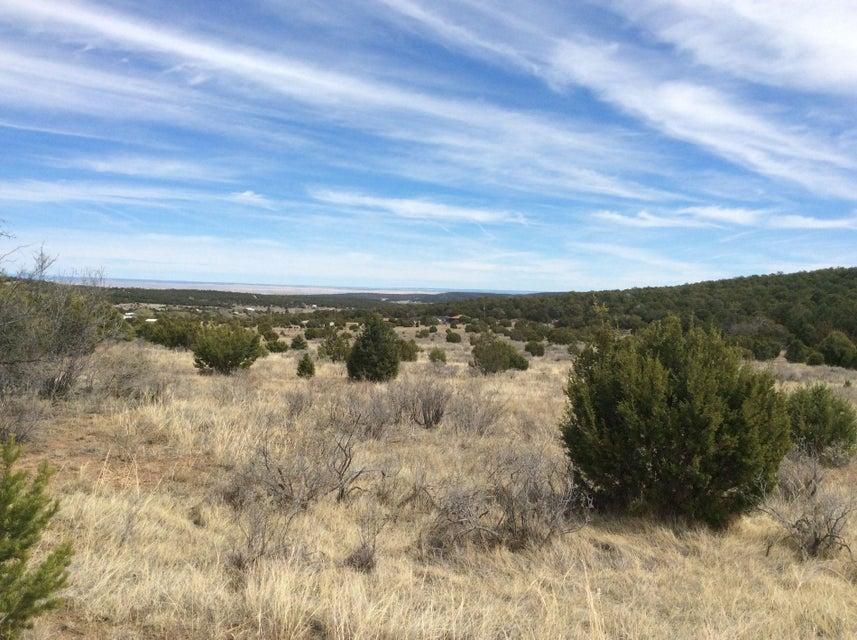 189 Brannan Road, Tijeras, NM 87059